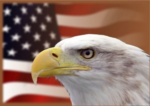 Bald-Eagle-American-Flag-Public-Domain-460x325