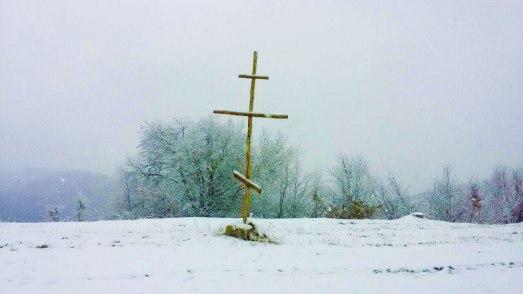 sinod-rocor